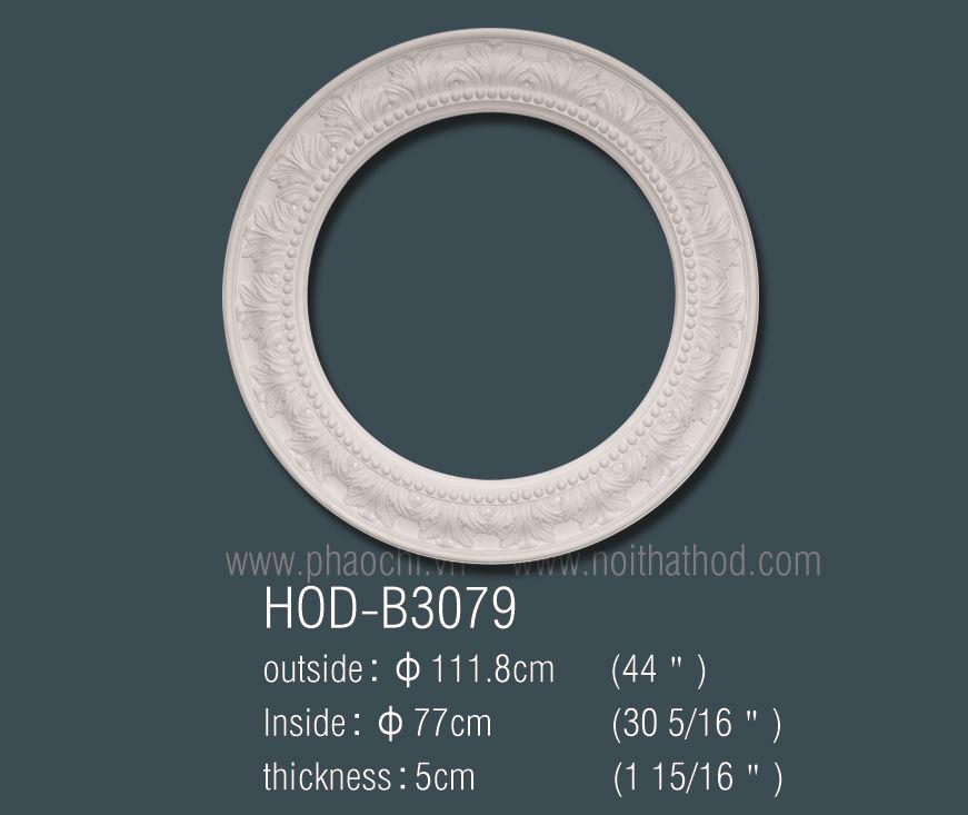 HOD-B3079