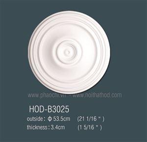 HOD-B3025