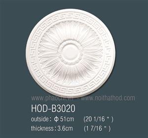 HOD-B3020