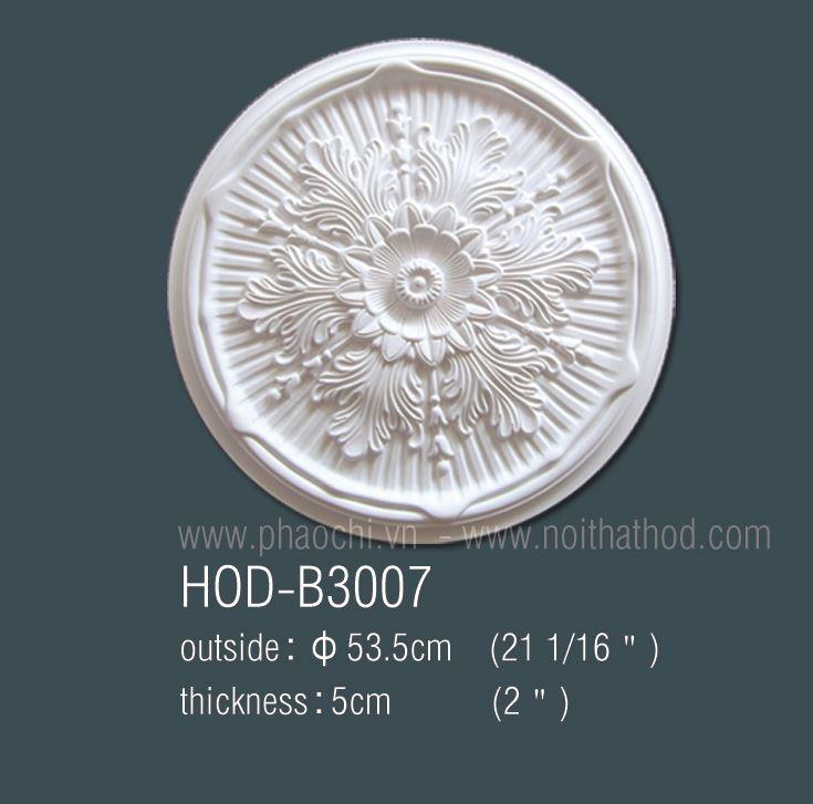 HOD-B3007