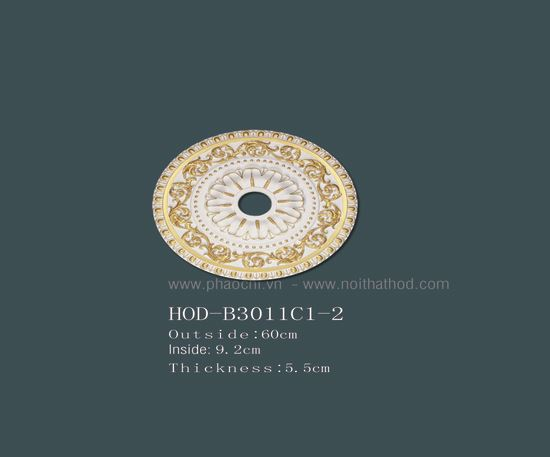 HOD-B3011